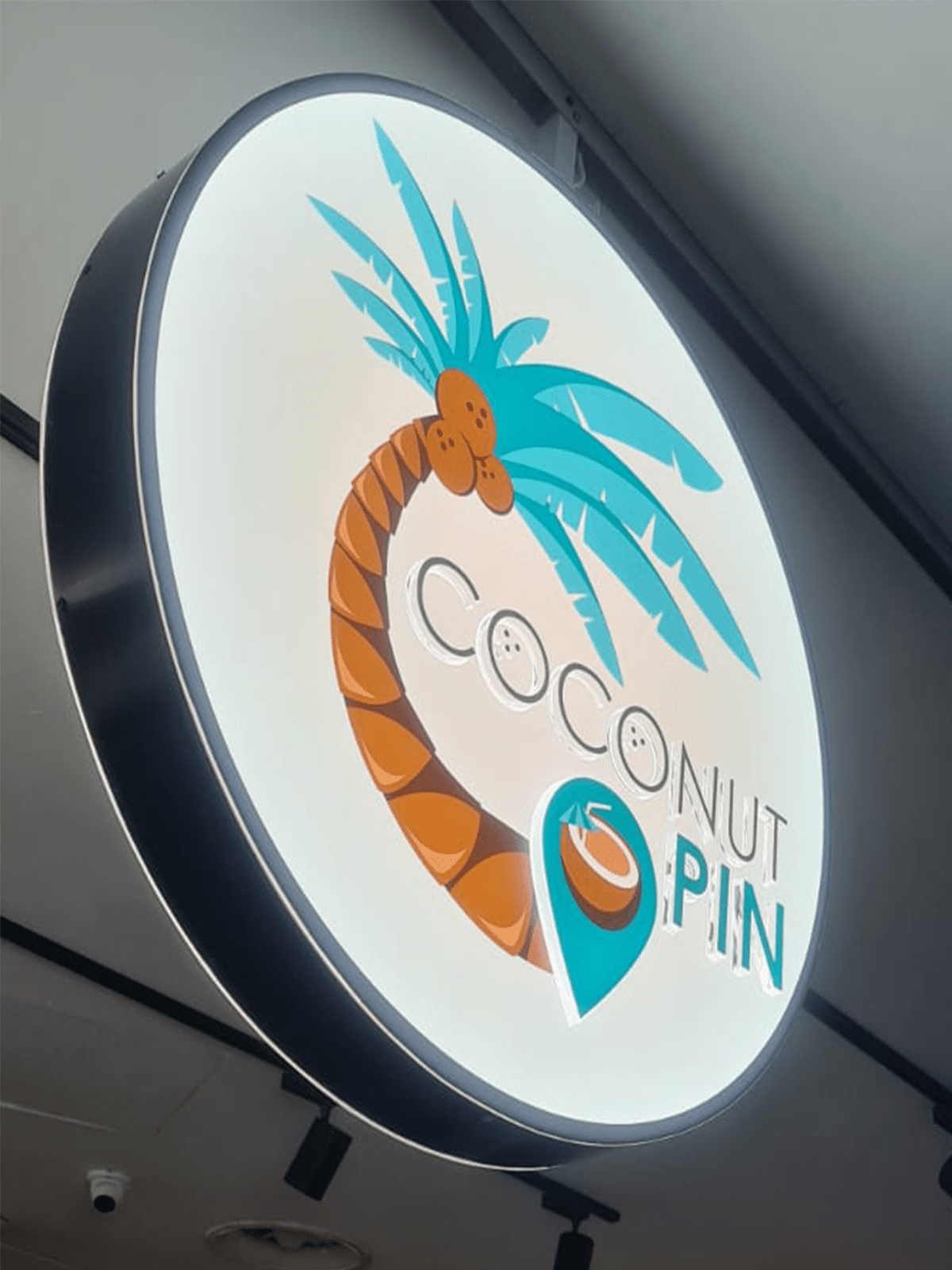 coconut pin